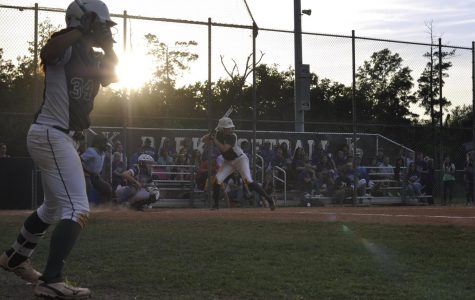 Softball breaks school records in playoffs