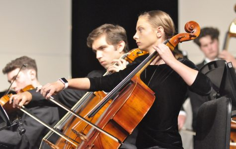 Social action reaches out to orchestra in class project to assist marginalized groups