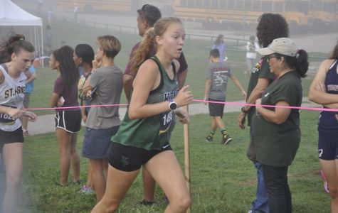 Varsity cross country takes first in district meet