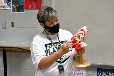 Biology teacher Kristen Lynam shows off one of her classroom models.