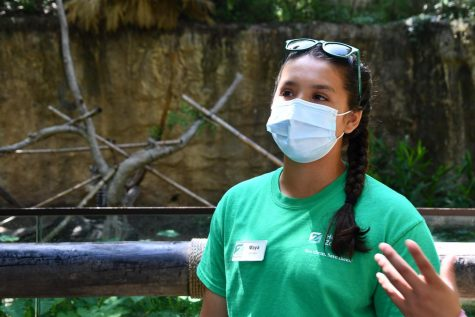 Maya Ortiz, 10, talks with guests at the Houston Zoo about the ring-tailed lemurs on June 23. She spent five weeks at the zoo as part of the Zoo Crew program.